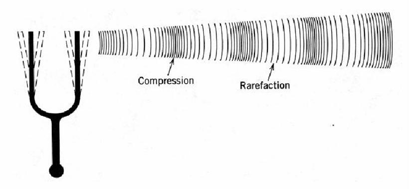 Ses Frekansı Nedir?