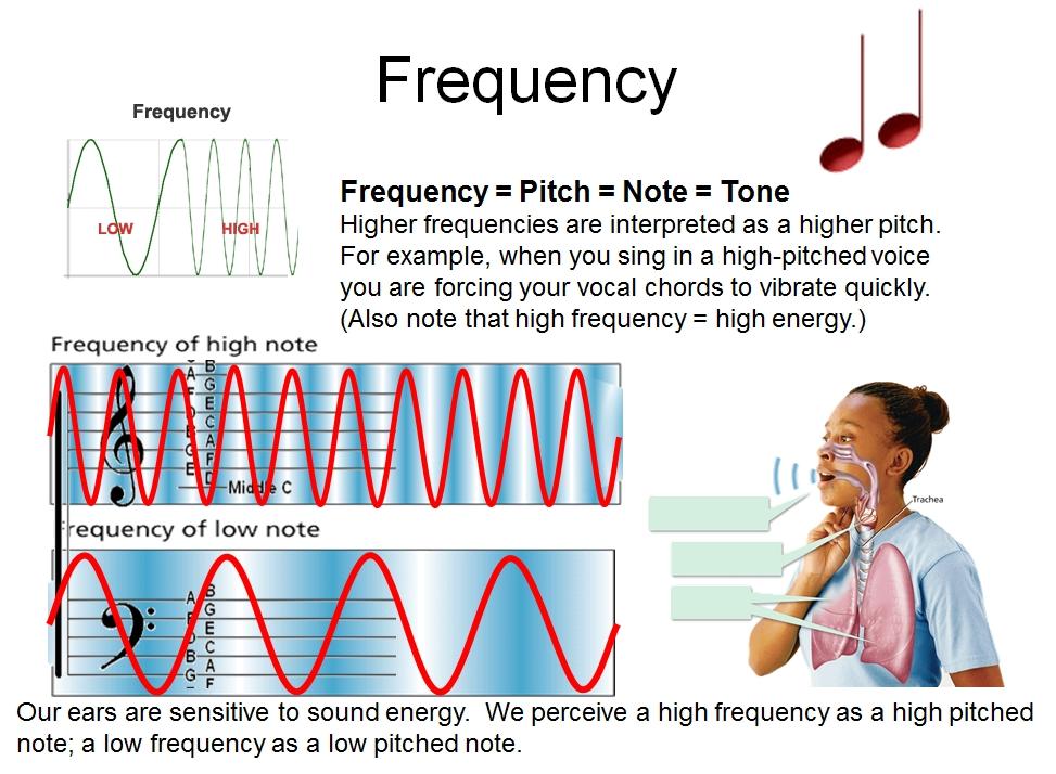 Frekans Dalgaları